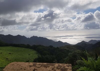 příroda na Tenerife