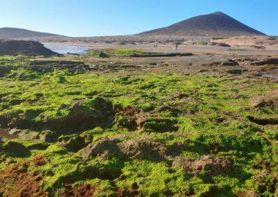 pláž při odlivu s Montana Roja