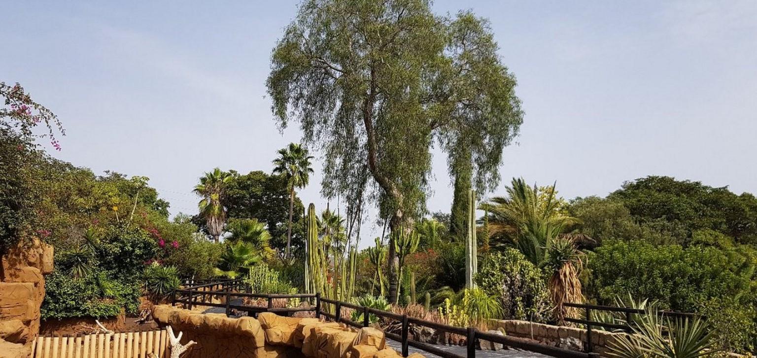 zoologická zahrada Jungle park