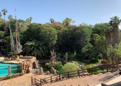 park Jungle park