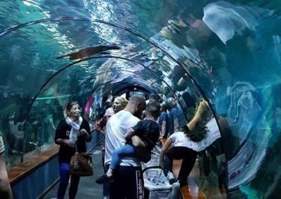 průchozí tunel v akváriu
