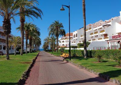 slunná ulice s palmami v Las Americas