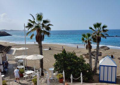 Pláž s palmami Costa Adeje