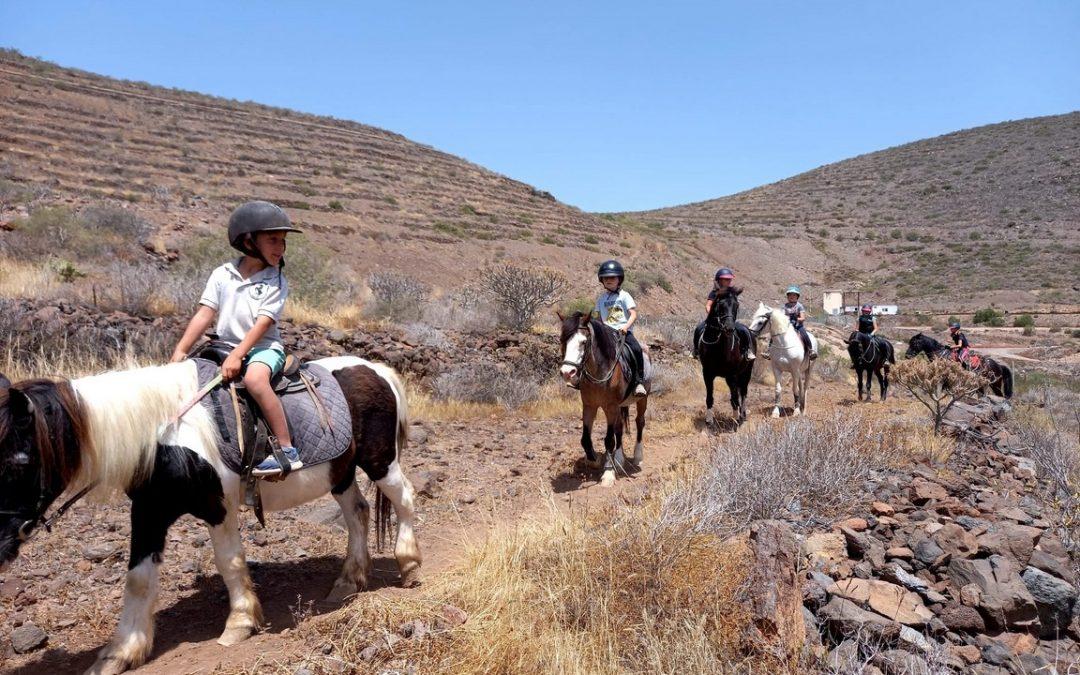 Projížďky na koních na Tenerife